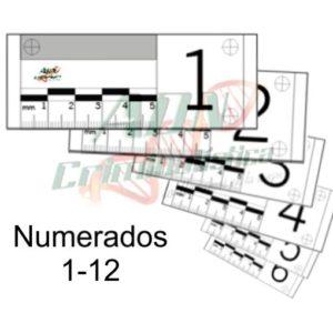 Testigos 5cm numeradas