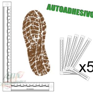 testigos metricos bidimensionales autoadhesivos
