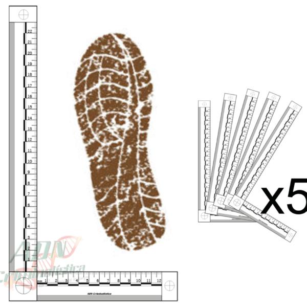 testigos metricos bidimensional blanco huella calzado